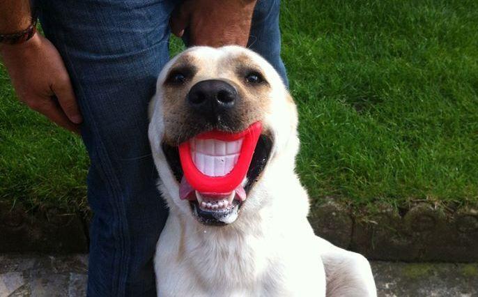 Iron et son plus beau sourire